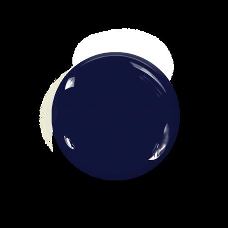 Le Mini Macaron(ル・ミニ マカロン)ジェルネイル /ミッドナイトブルーベリー/Midnight Blueberry