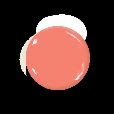 Le Mini Macaron(ル・ミニ マカロン)ジェルネイル /ピーチ / Peach